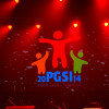 pgsi experience